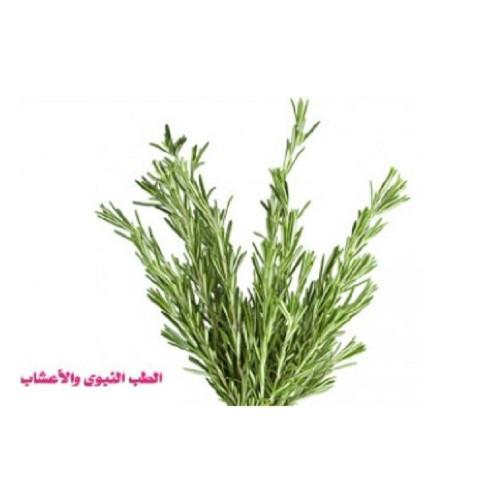 اكليل الجبل مجفف 250 ج Rosemary Hibat Al Sama
