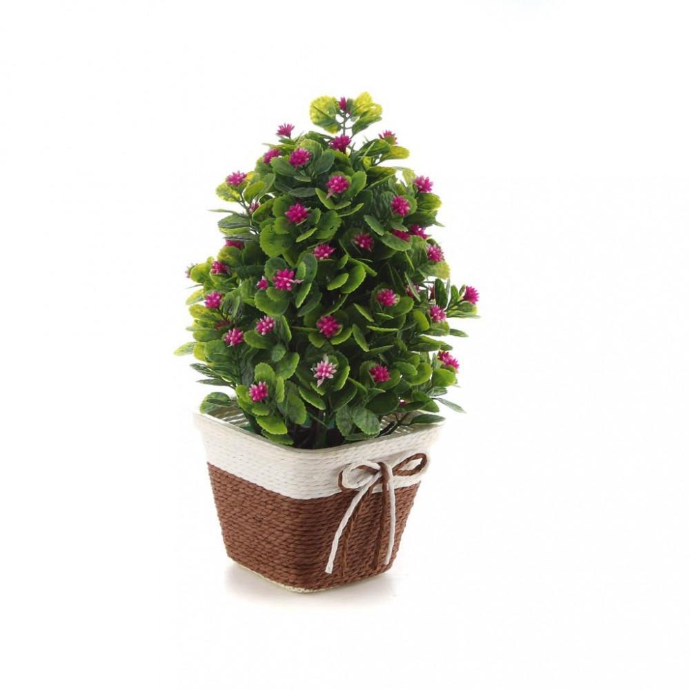 زهور مع مراكن صغير 10-36323