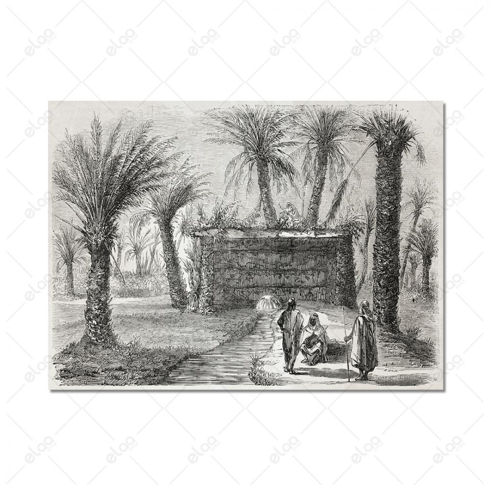 البادية العربية والخيمه والنخل