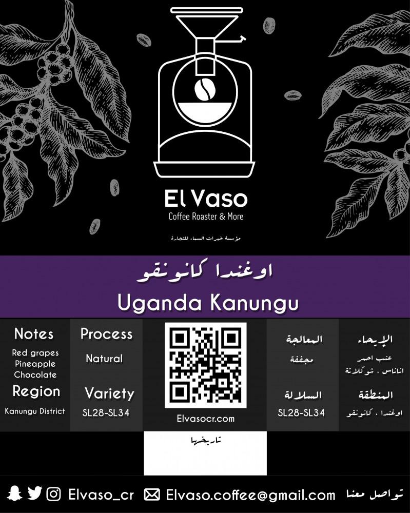 Uganda coffee قهوه اوغندية