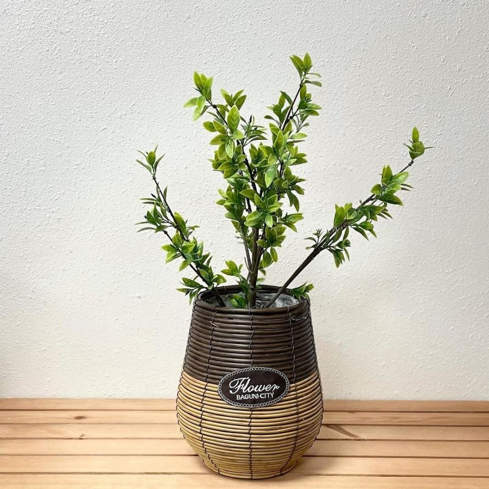 سلة خوص للزرع خيزران نباتات زينه ومراكن ديكورات المنزل زرع صناعي سلل