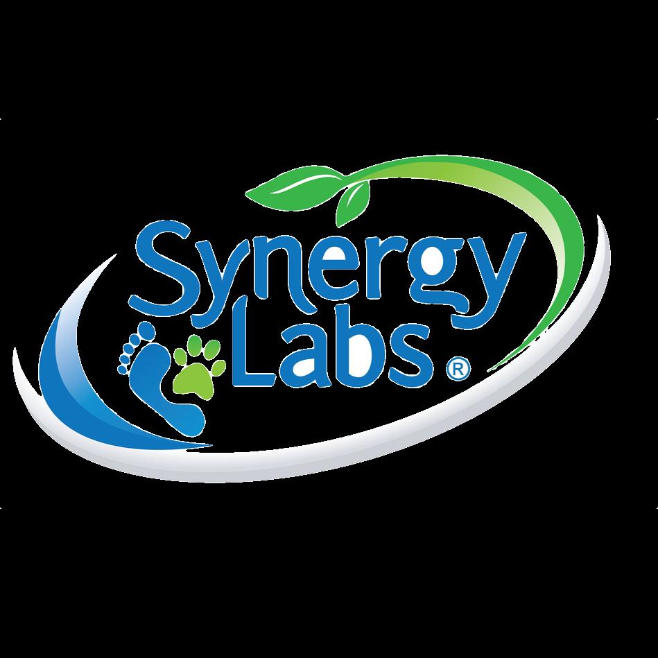 SynergyLabs