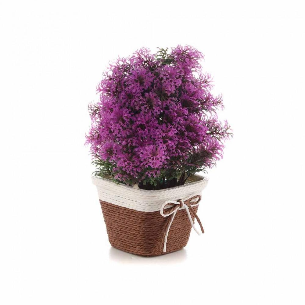 زهور مع مراكن صغير