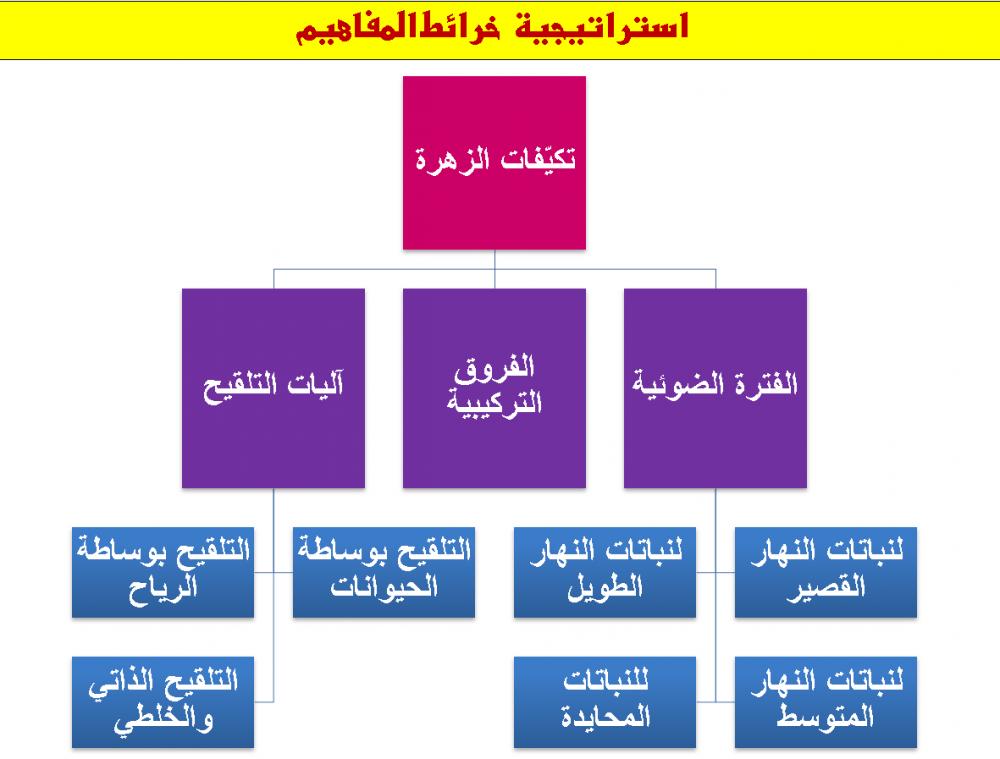 توزيع احياء 3 مقررات