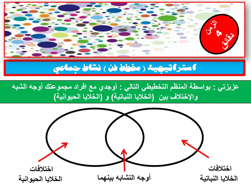 نظام الثلاث فصول