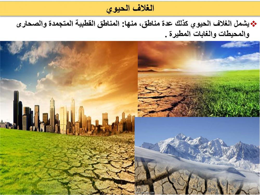 عروض بوربوينت مادة علم البيئة
