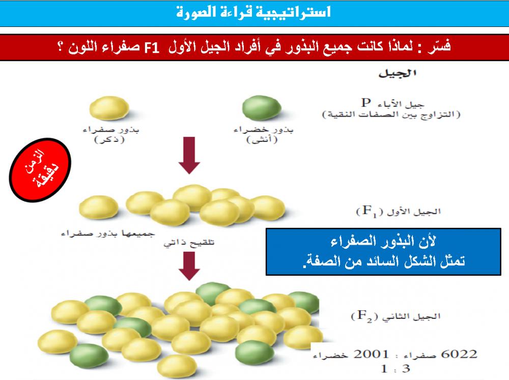 دليل المعلم احياء 3 مقررات