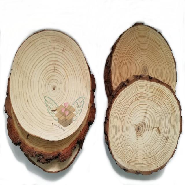 قاعدة خشب جذوع الشجر 20سم - Professional crafts