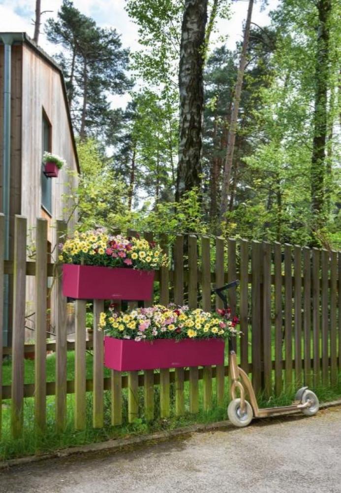 حوض نبات ري ذاتي الماني Lechuza Balconera Color