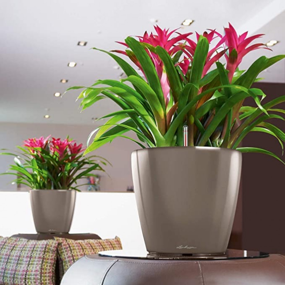 حوض نبات الماني ذاتي الري  Lechuza Classico Premium LS
