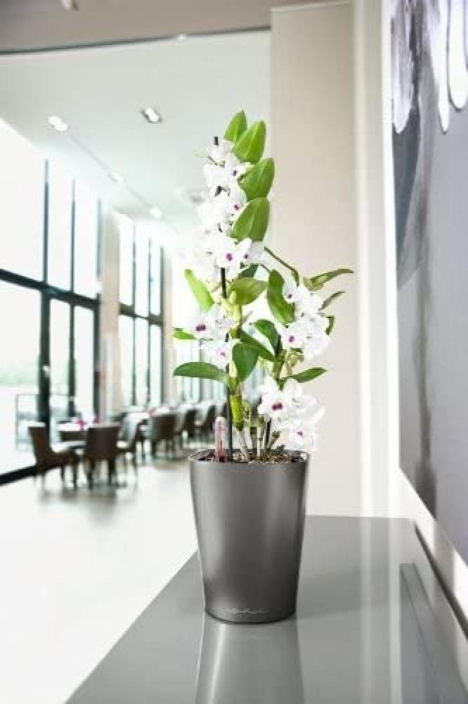 حوض نبات ذاتي الري  Lechuza Deltini Premium