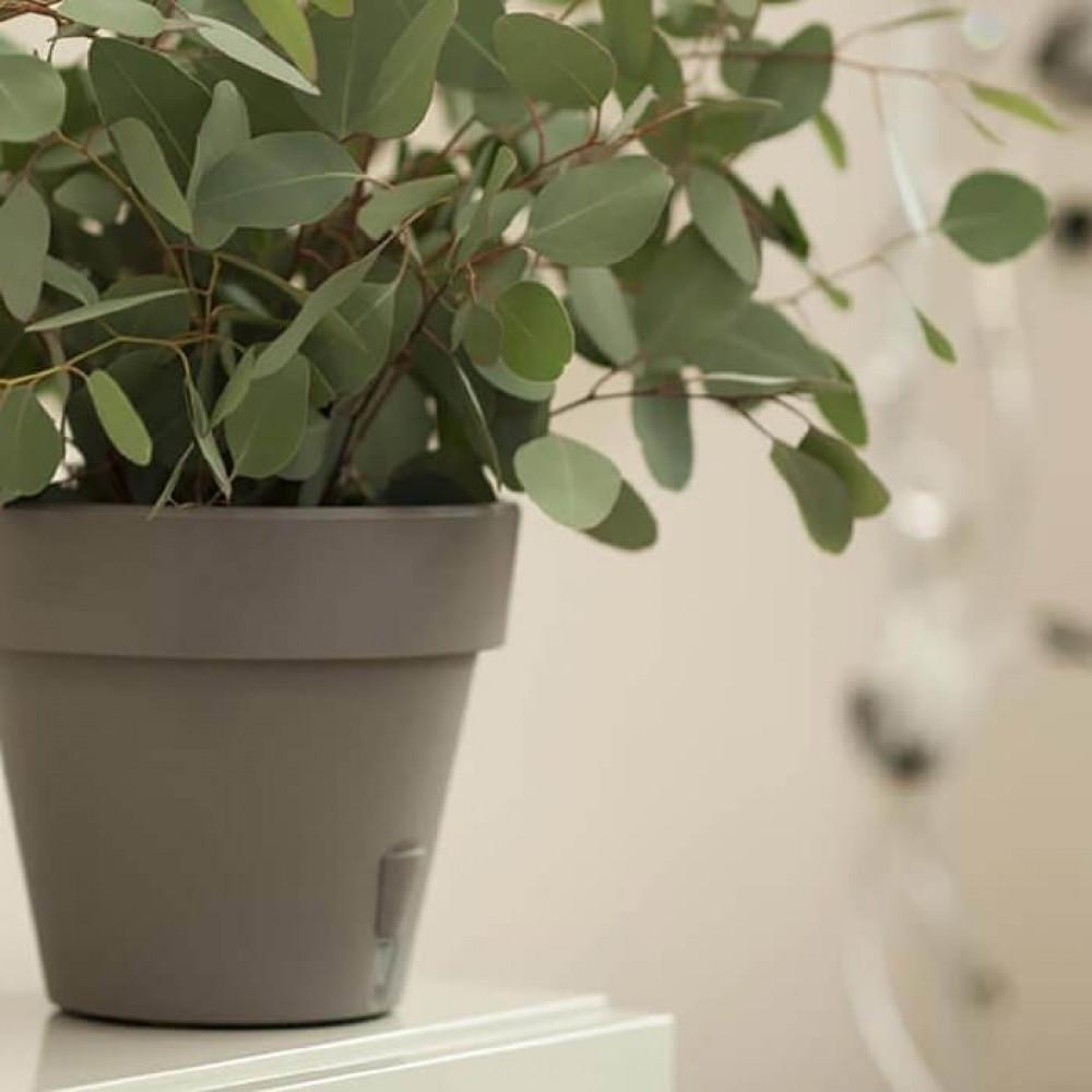 مراكن ري ذاتي اوروبي Santino Latina للنباتات الداخلية