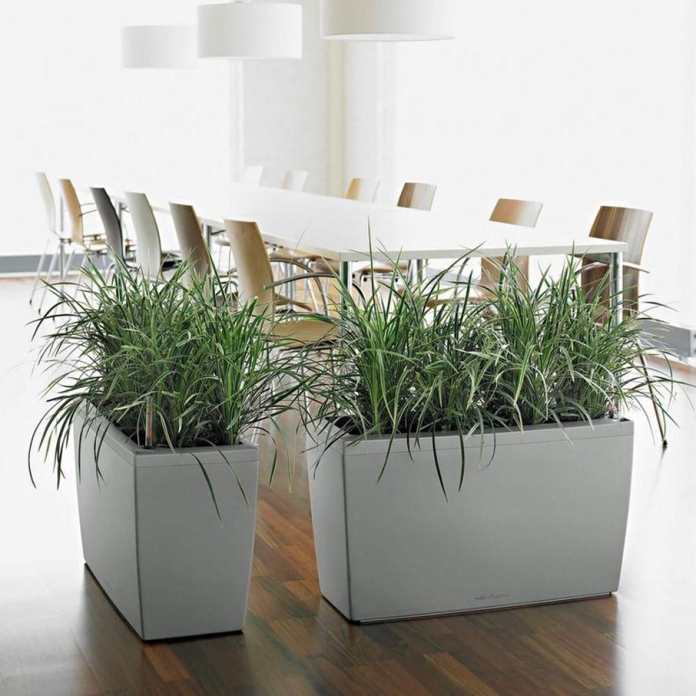 حوض نبات ريي ذاتي Lechuza  Cararo Premium