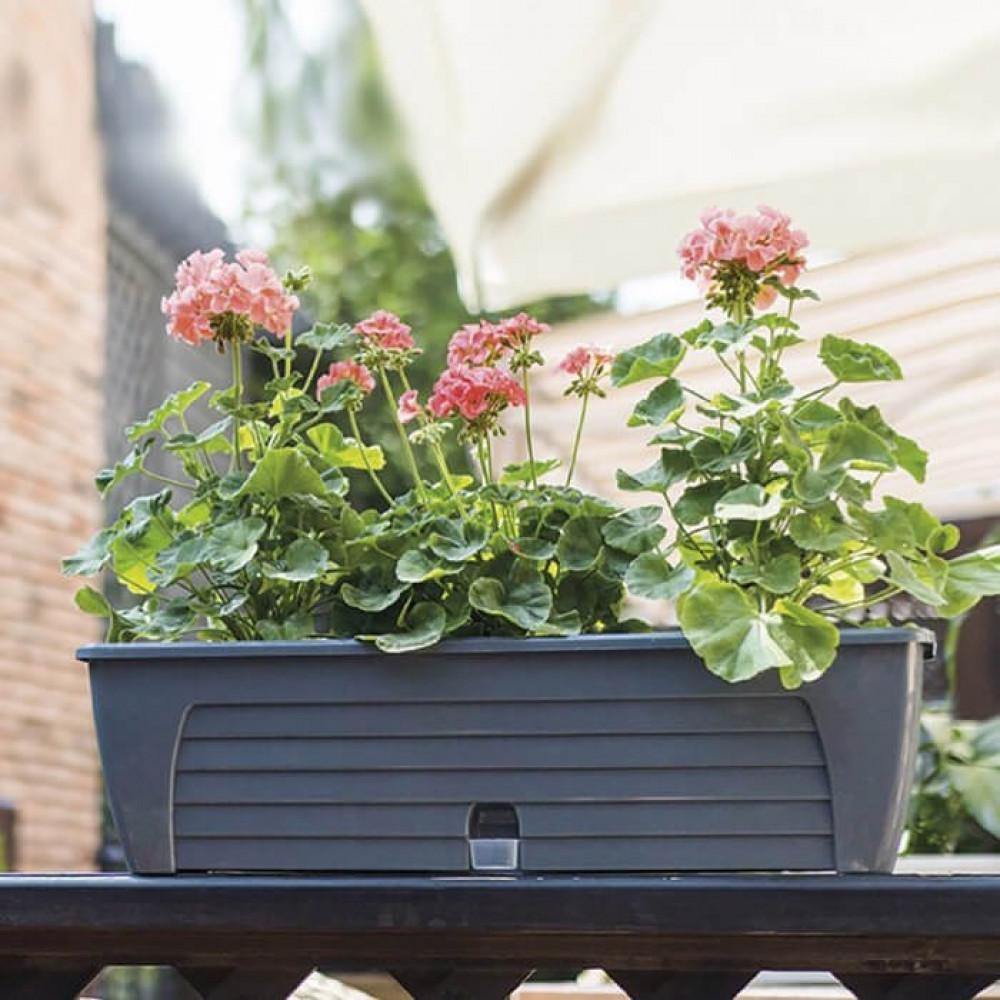 مراكن ري ذاتي اوروبي Santino Lido Plus Window Box للنباتات الخارجية