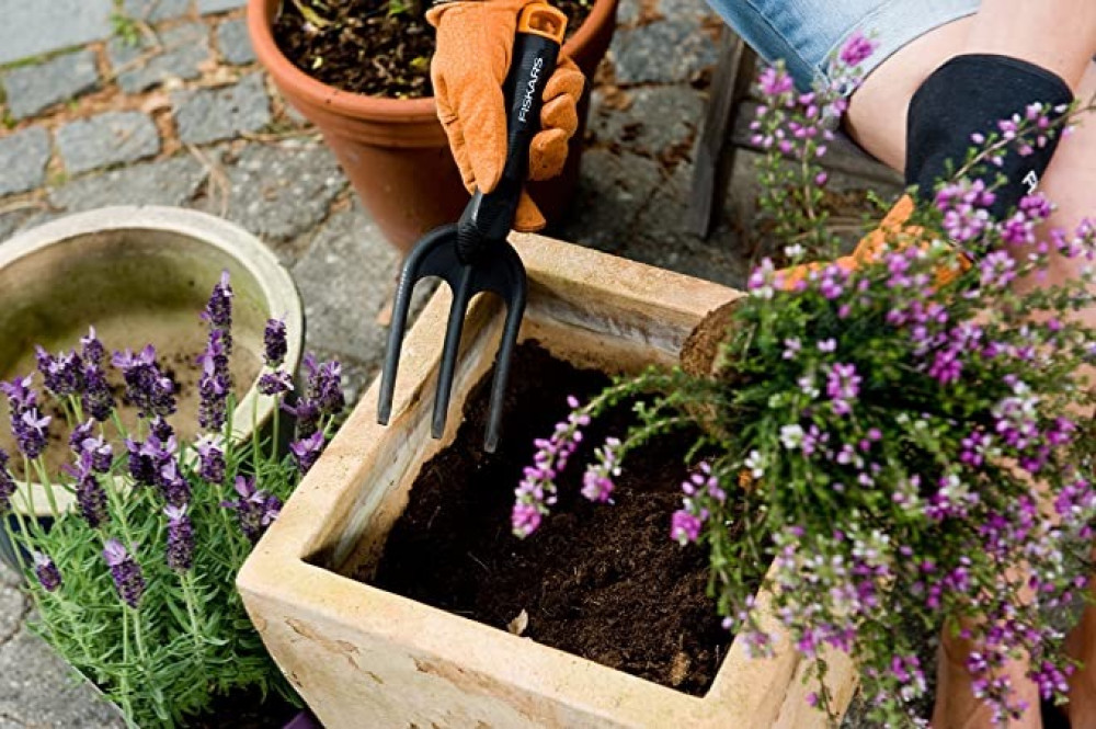 شوكة زراعة وإزالة أعشاب