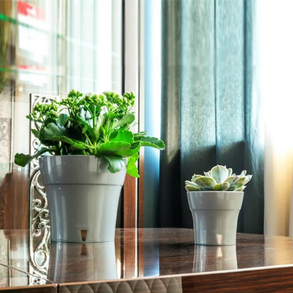 مراكن ري ذاتي اوروبي Santino Dali للنباتات الداخلية