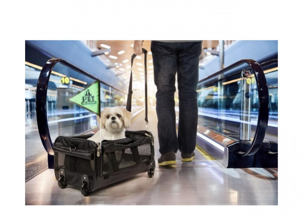 شيربا حقيبة تنقل بعجلات للقطط والكلاب - لارج