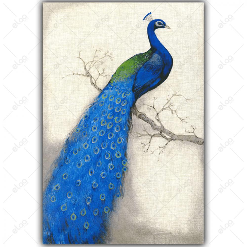 لوحة فنية لطاؤوس باللون الازرق وخلفية باللون الابيض