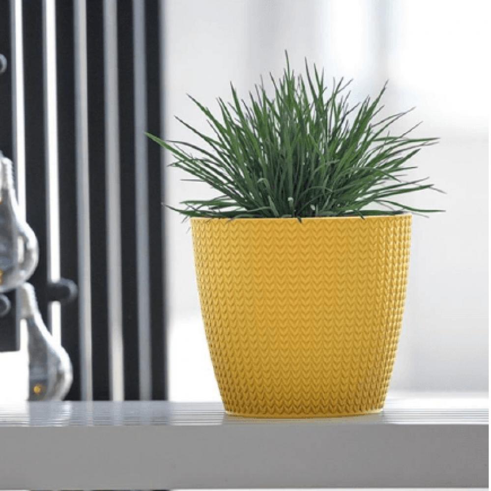 وعاء نباتات ديكوري