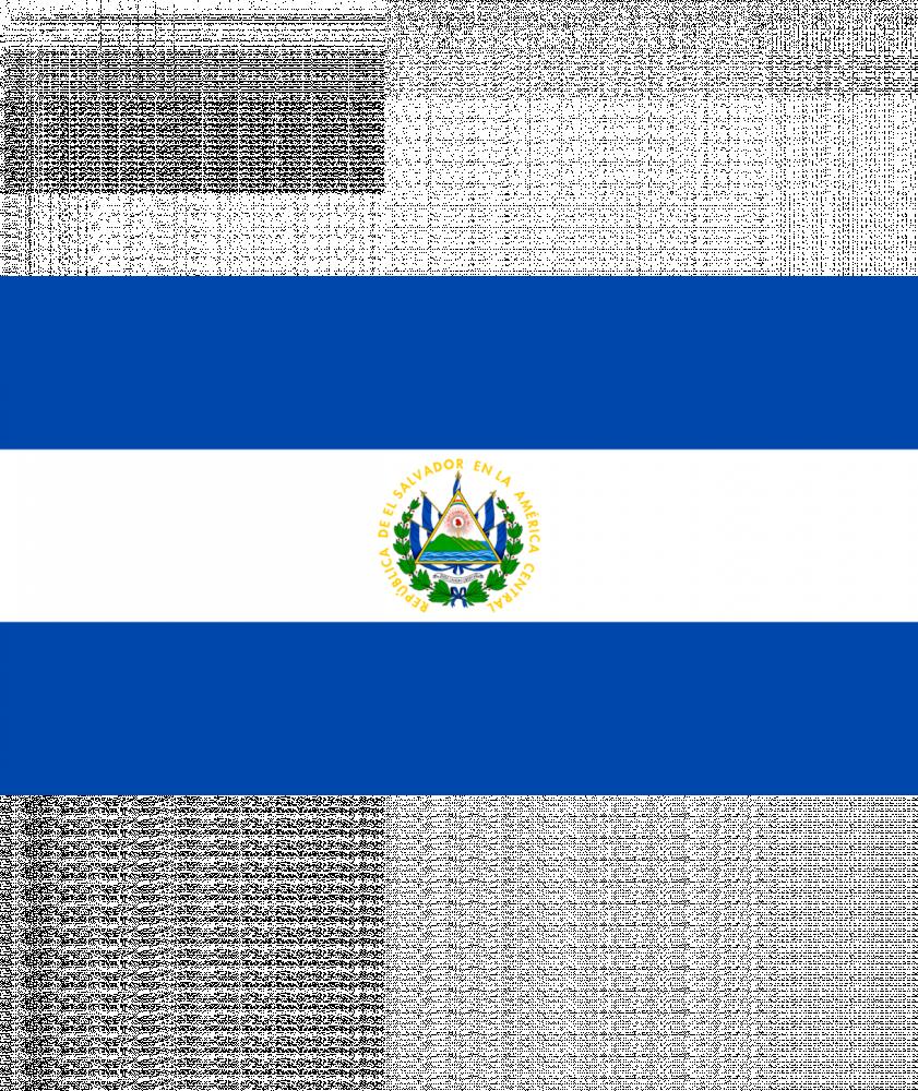 بياك-بلوم-روستري-السلفادور-ال-بوربولن-قهوة-مختصة
