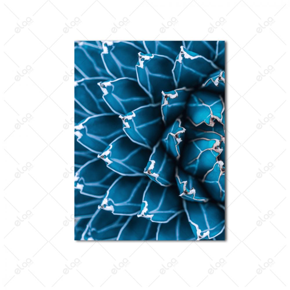 لوحات جدارية لنبات الصبار بدرجات اللون الازرق