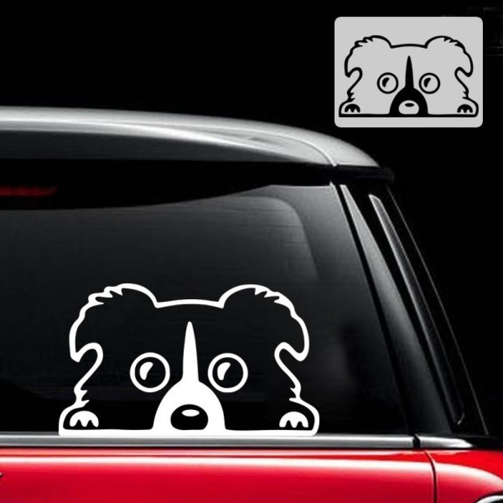 ملصق سيارات على الزجاج