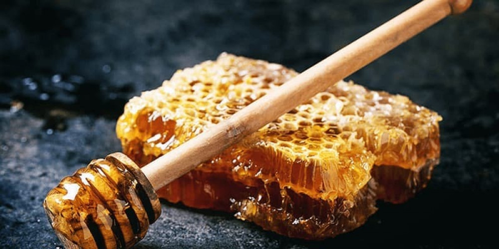 فوائد عسل السدر للمعدة