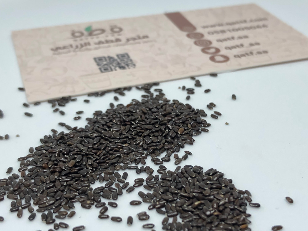 بذور نبات اللافندر العطري - Lavandula Angustifolia