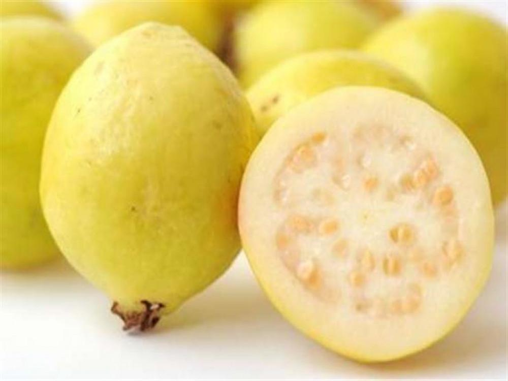 فاكهة الجوافة الصفراء - Psidium guajava