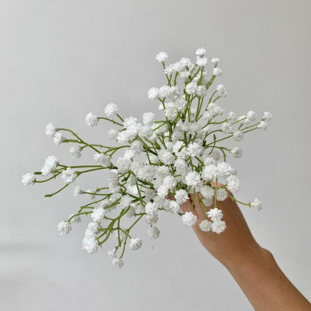 زهرة جيبسوفيلا - Gypsophila