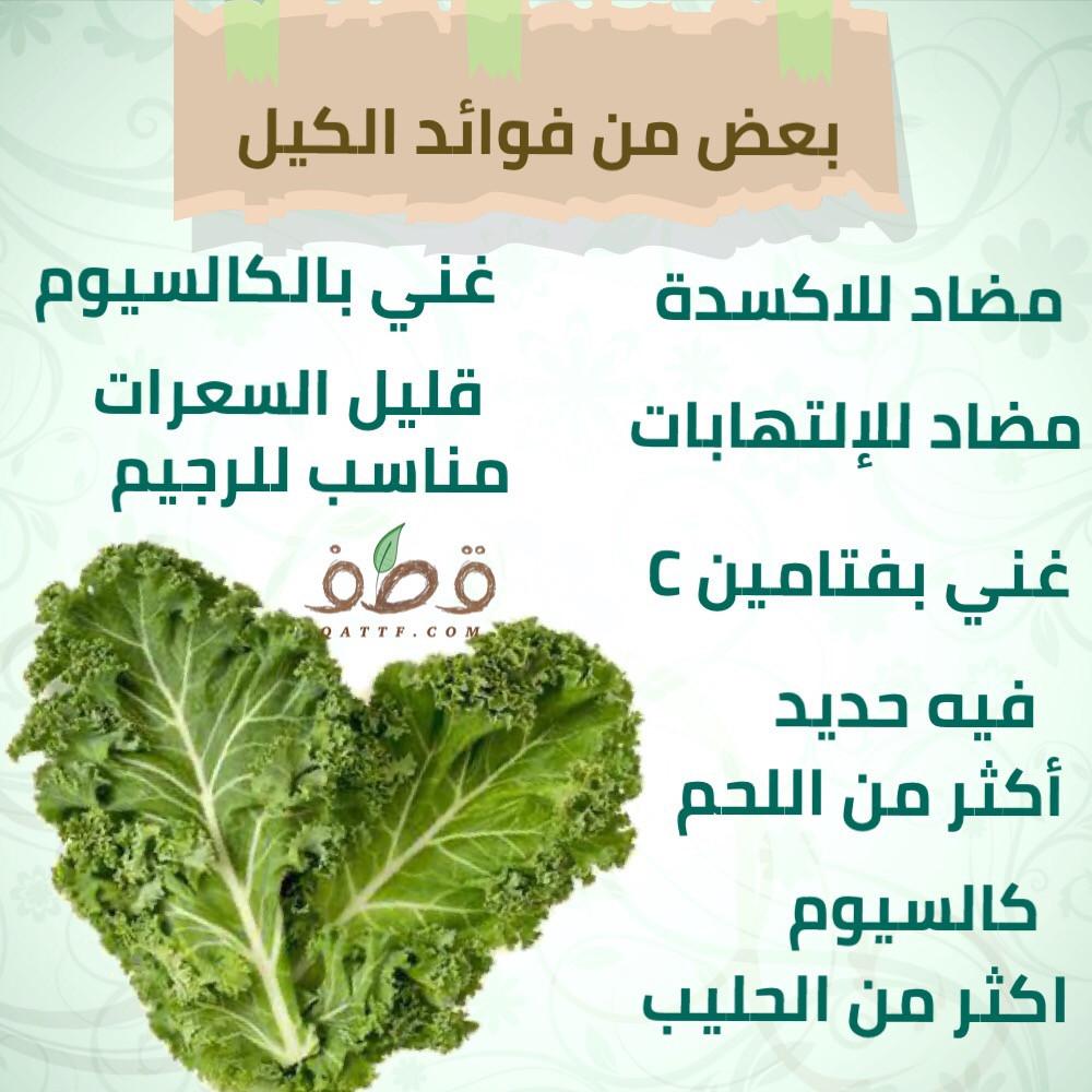 فوائد الكيل  أو الكالي - Brassica Oleracea
