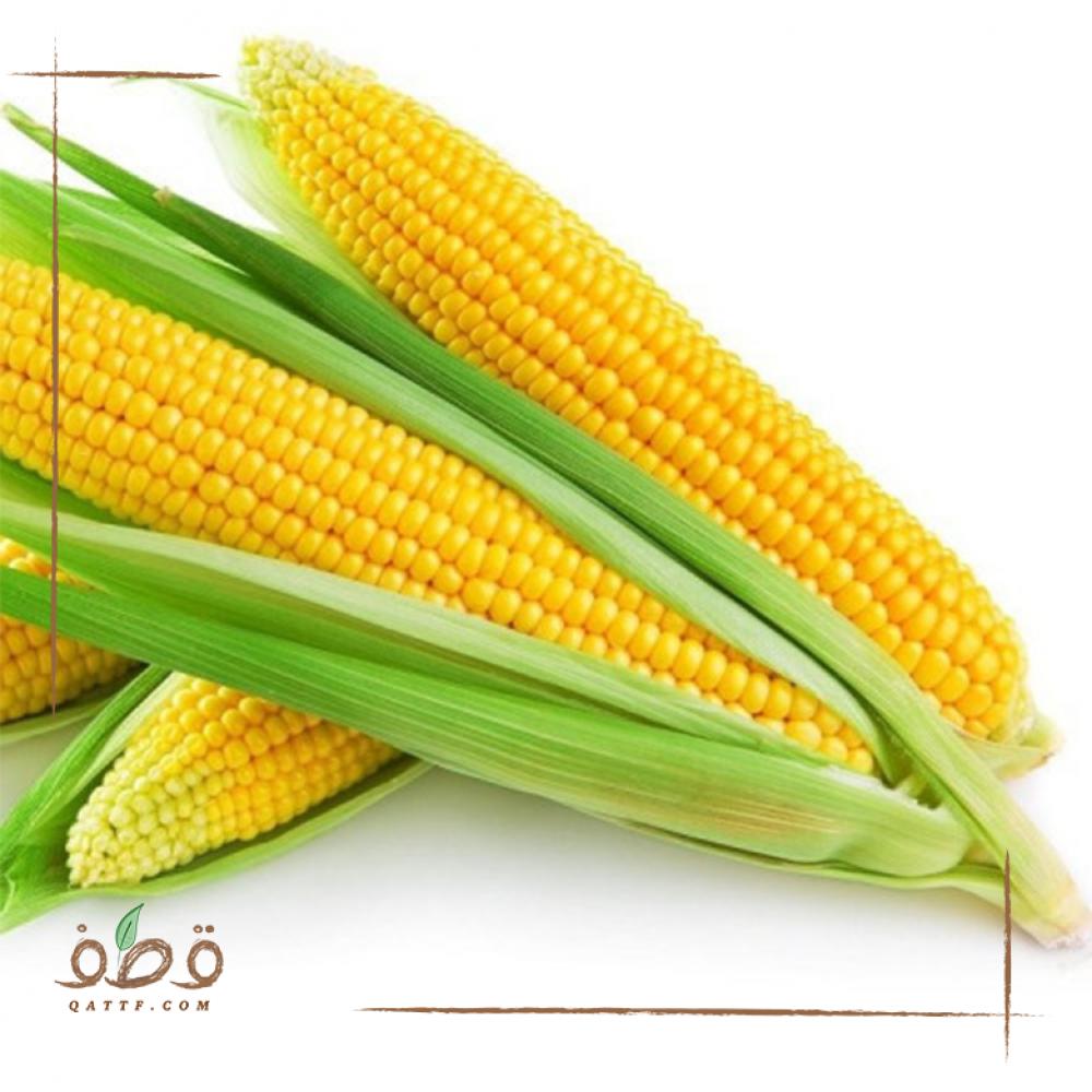 بذور الذرة الصفراء  - Zea mays