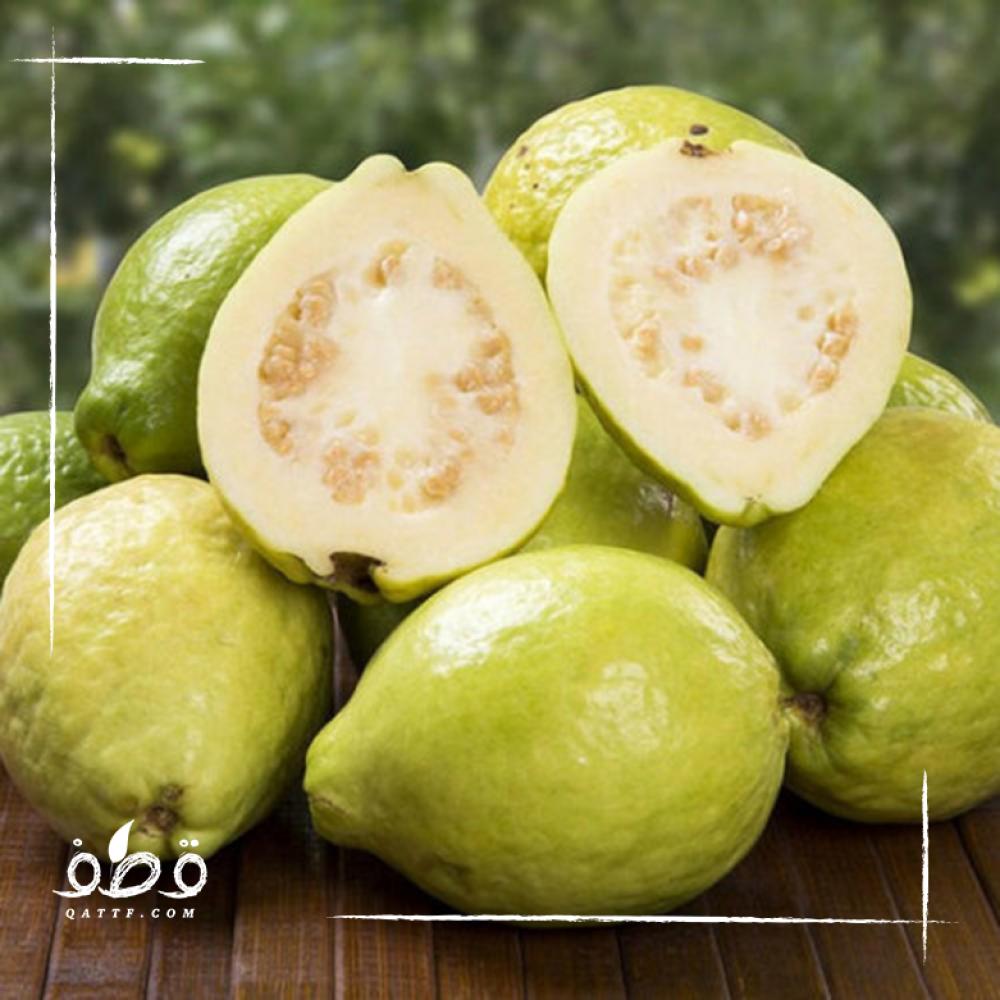 الجوافة الصفراء - Psidium guajava