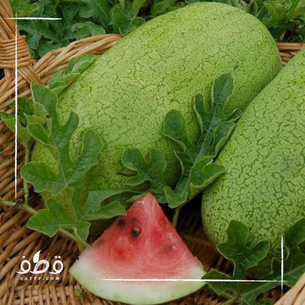 بذور البطيخ  الجح الاسطواني - Watermelon