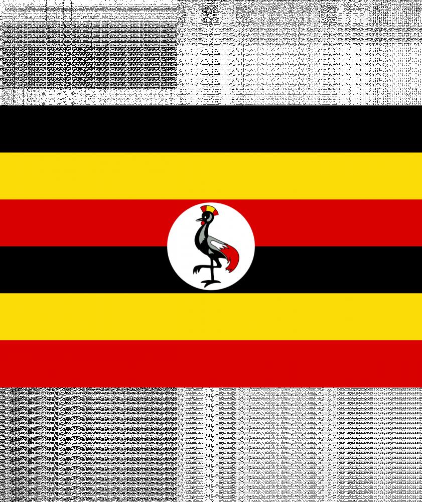 بياك-بلوم-روستري-اوغندا-إريسا-قهوة-مختصة