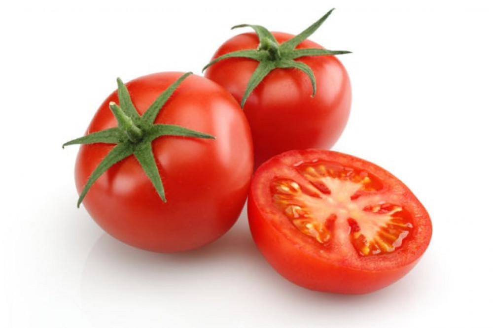 بذور الطماطم - Solanum lycopersicum