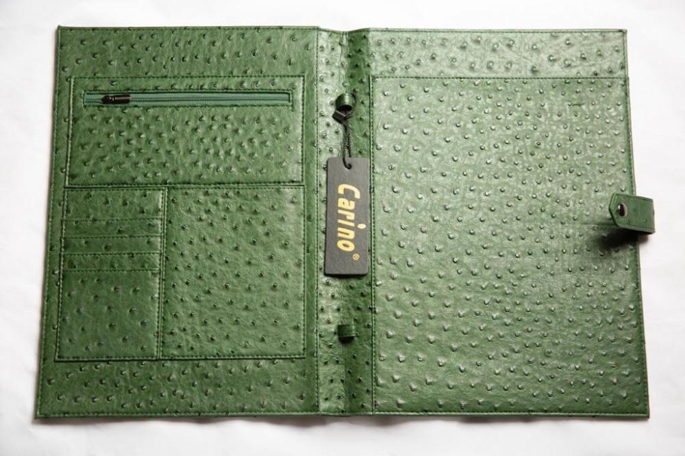 شراء باوتش براند لون اخضر - داما - متجر لوازم اكسسوارات