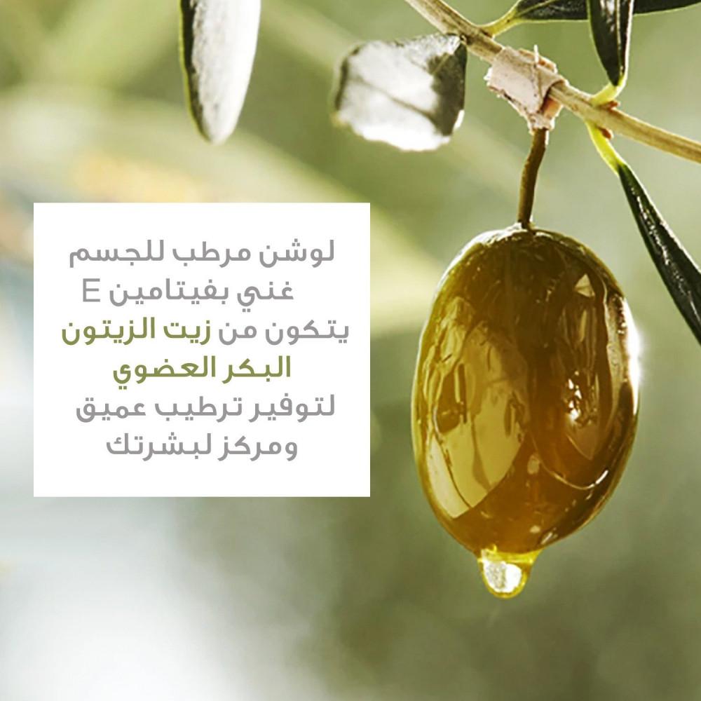 ماهو الفرق بين زيت الزيتون وزيت الزيتون البكر الممتاز لوشن مرطب للجسم