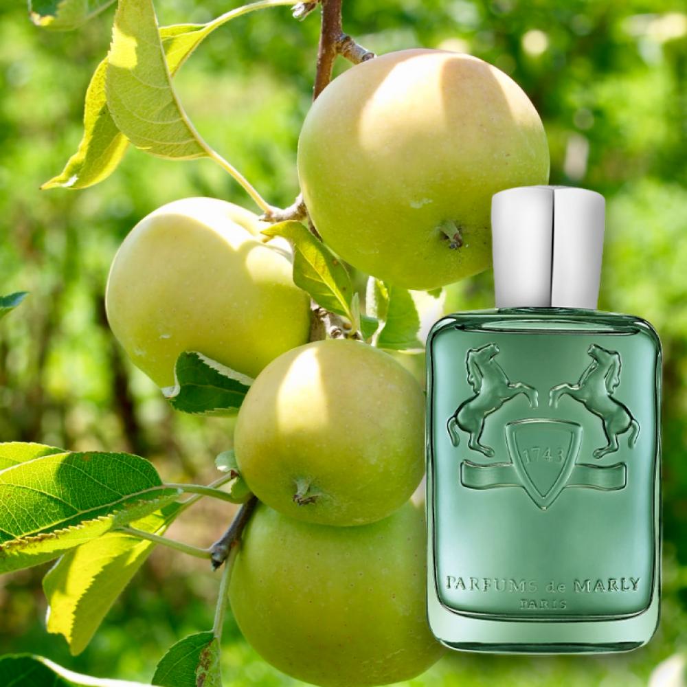 عطر مارلي جرينلي marly greenley perfume