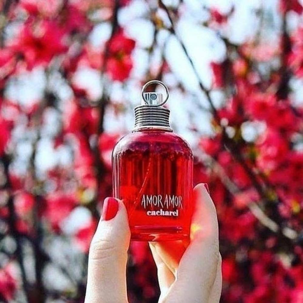 عطر كاشريل امور امور amor amor cacharel perfume