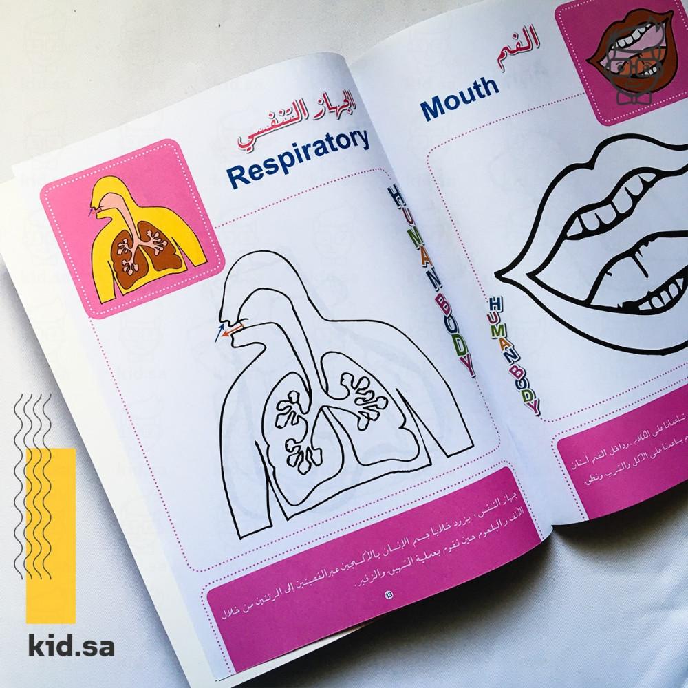 نشاط تعليم و تعريف اعضاء جسم الانسان للاطفال