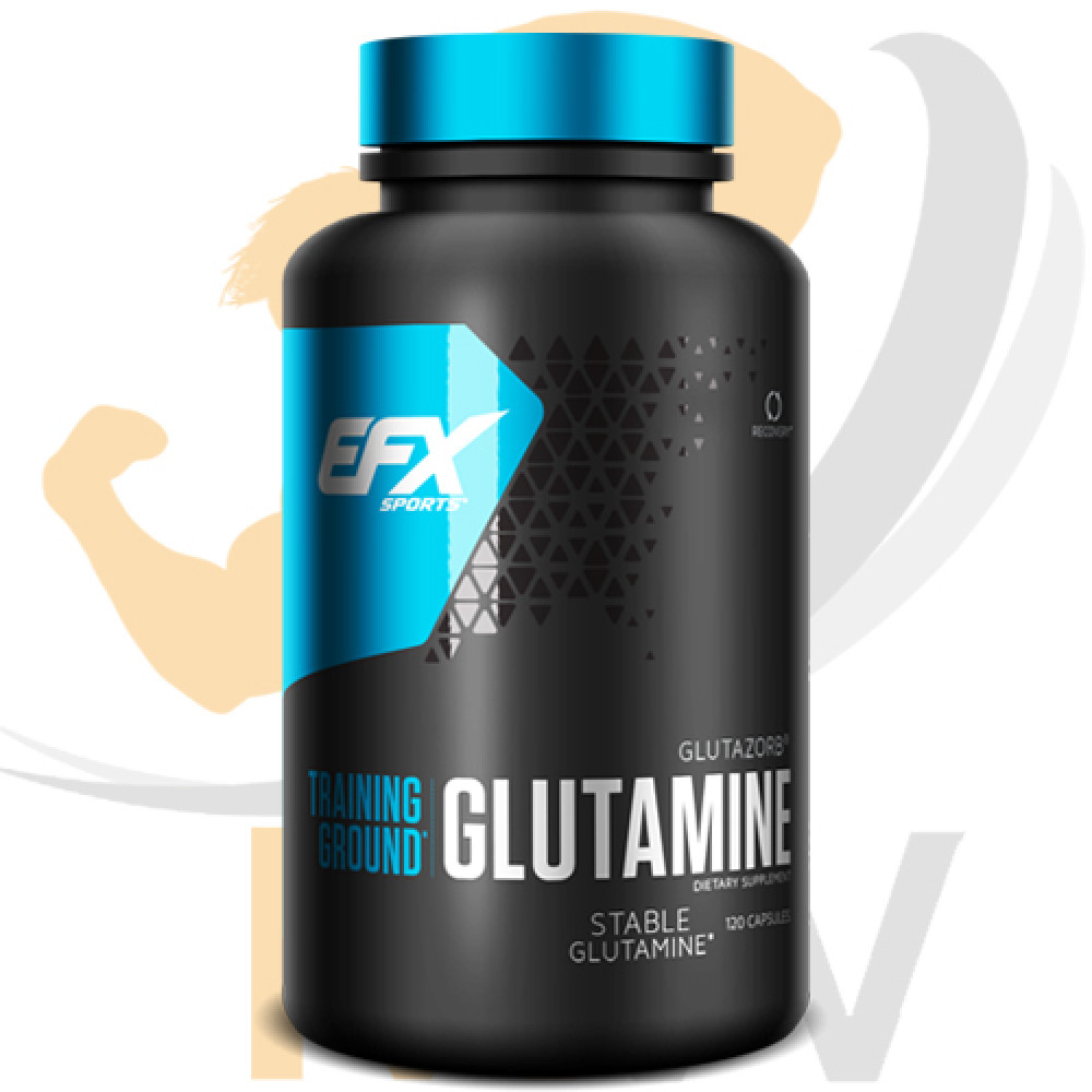 عالم العضلات muscles world مكملات غذائية جلوتامين efx glutamine