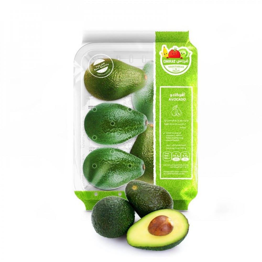 فاكهة افوكادو - ثمرة الافوكادو