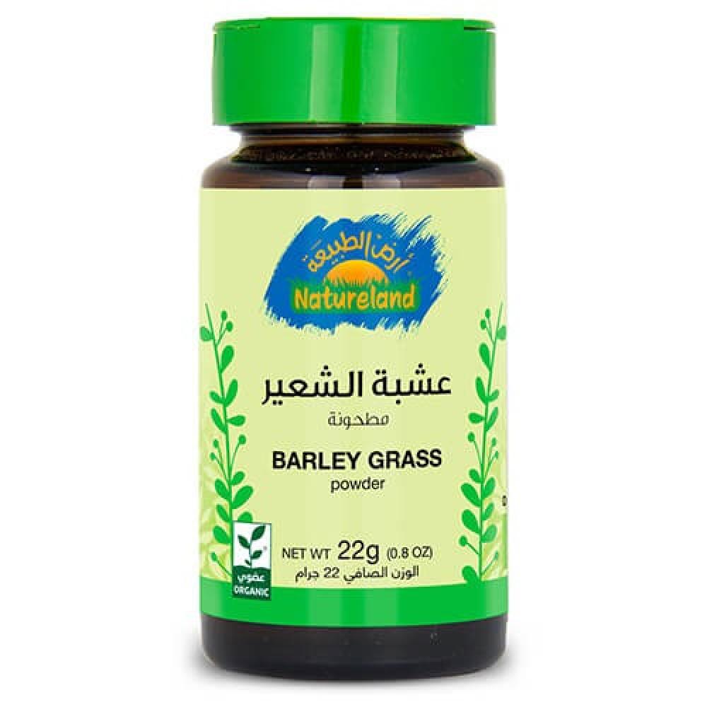 عشبة الشعير مطحون عضوي 22 جرام