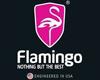 فلامنغو FLAMINGO
