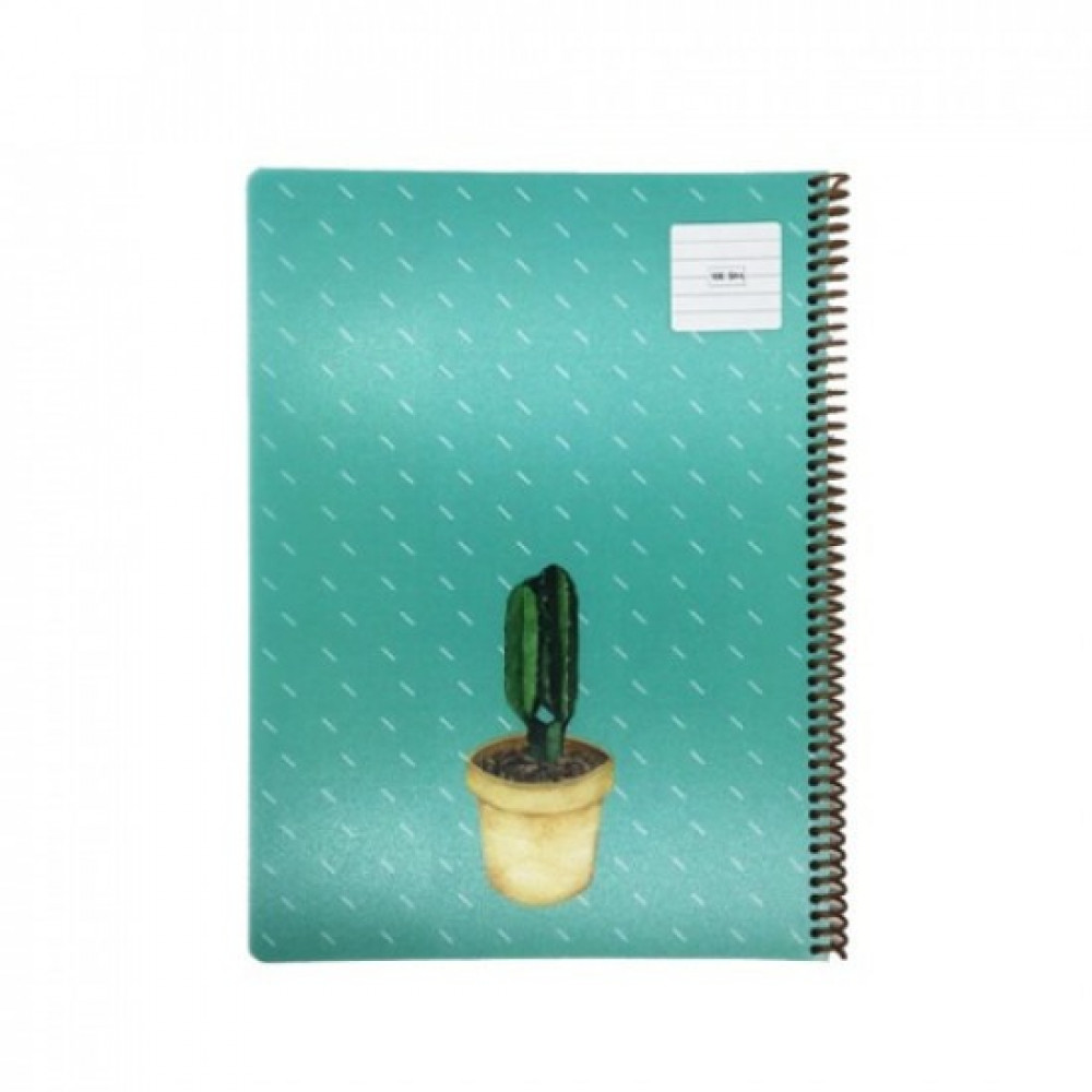 دفتر سلك كاسكن مسطر نبات 100 ورقة A4  ملون