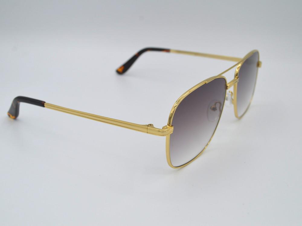 تروي Troy نظارات شمسية رجالي - نسائي لون ذهبي ولون العدسة بني مدرج C2