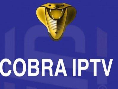 اشتراك كوبرا لجميع القنوات التلفزيونية
