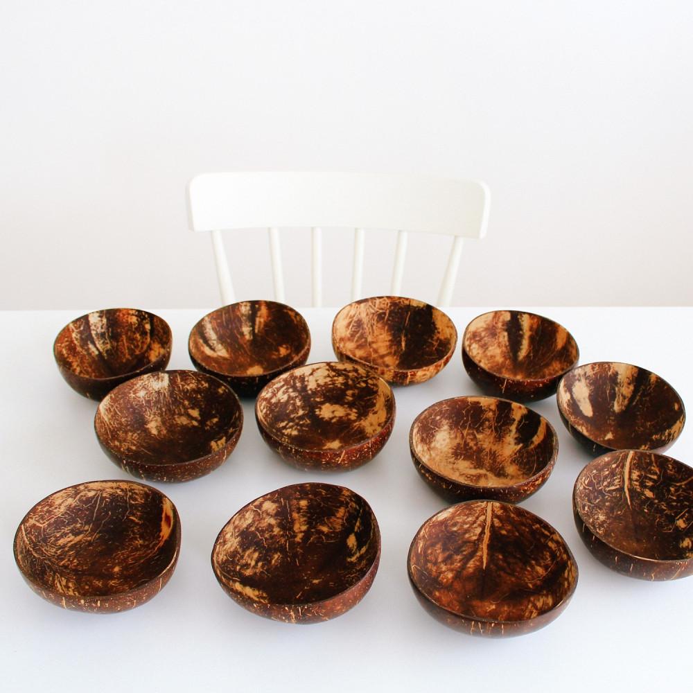 وعاء قشر جوز الهند الطبيعي سموذي زبدية فيقن نباتي coconut bowls متجر