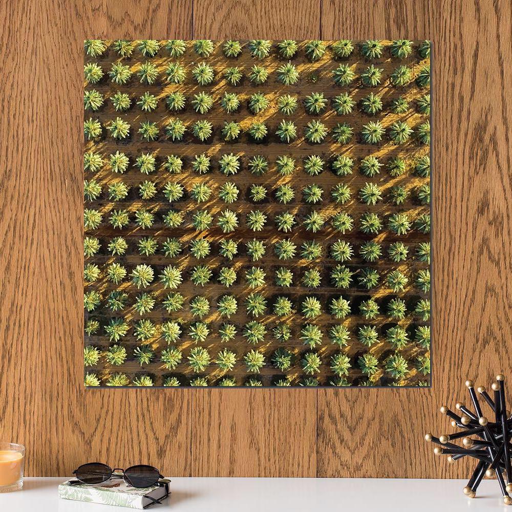 لوحة النخيل خشب ام دي اف مقاس 30x30 سنتيمتر